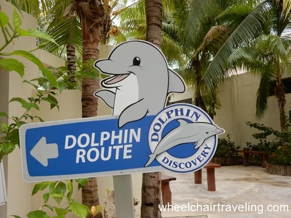 mexico_2015_dolphins_alo_wt_1