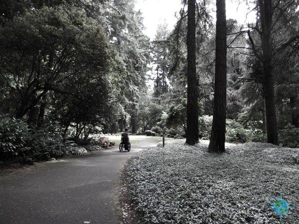 portland_grotto_4