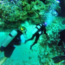 Adapted Scuba Diving in Cozumel, Mexico