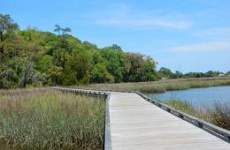 8 Savannah Outdoor Attractions & Activities