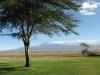 kilimanjaro from ol tukai lodge