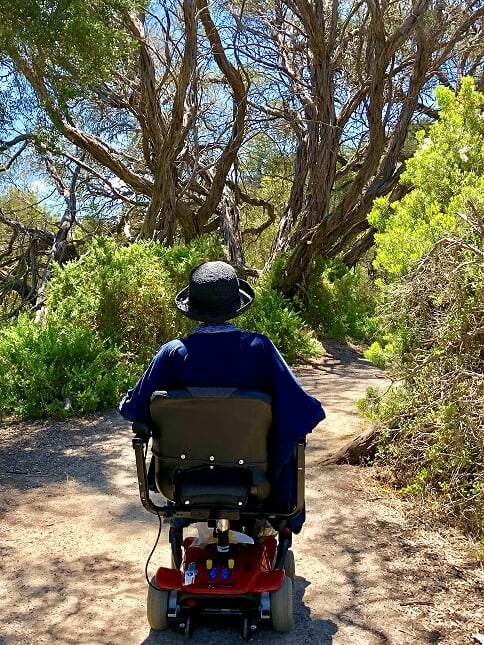 100 hitchcock ave barwon heads accessible paths  16