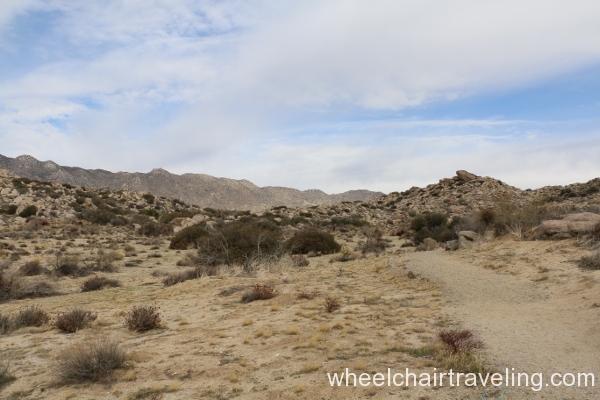 13_Culp Valley Trail