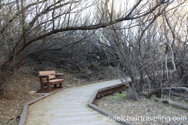 3_Marsh Trail