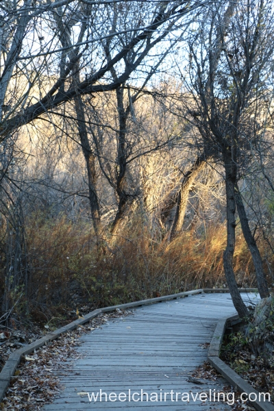 5_Marsh Trail