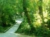 lake_chabot_regional_park_6