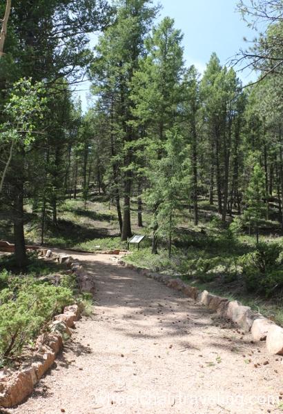 13_Ponderosa Loop Trail