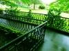 fioli_gardens_10