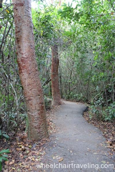 09_Gumbo-Limbo Trail