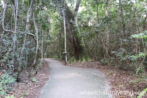 10_Gumbo-Limbo Trail