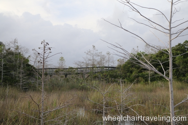 14_Ramp on Pa-hay-okee Trail