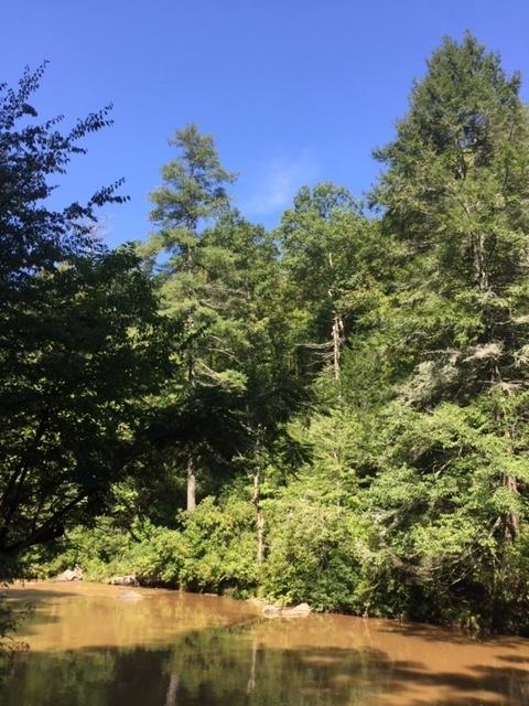 Amicalola-river-trail-18