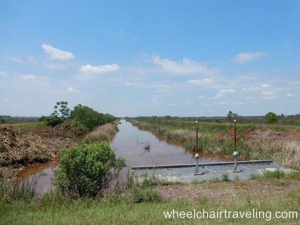 savannah_ga_wetlands_refuge_2016_wt_alo_20