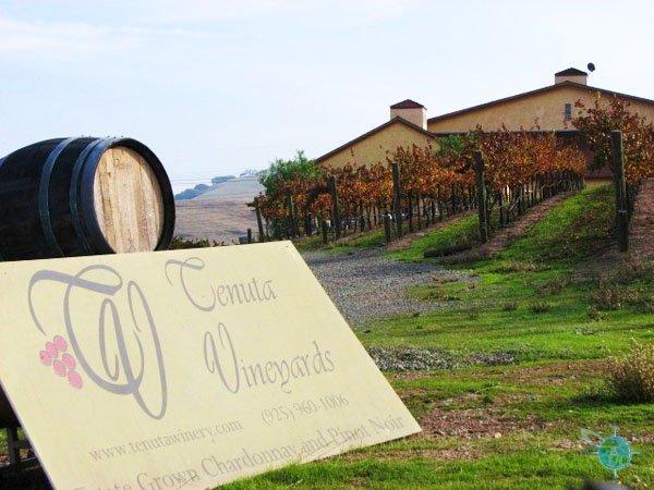 Tenuta Winery