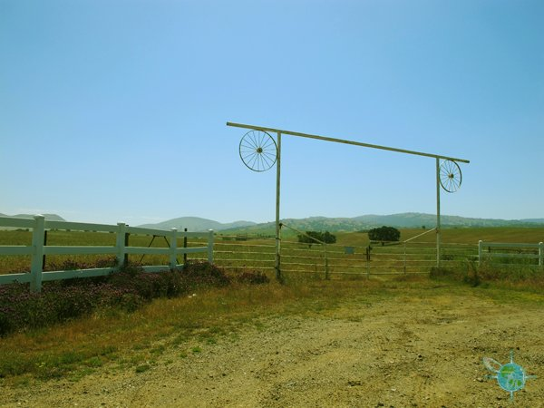 livermore_wine_country_25