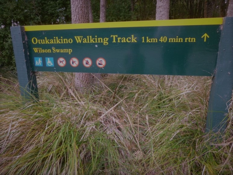 otukaikino-walk-1.2
