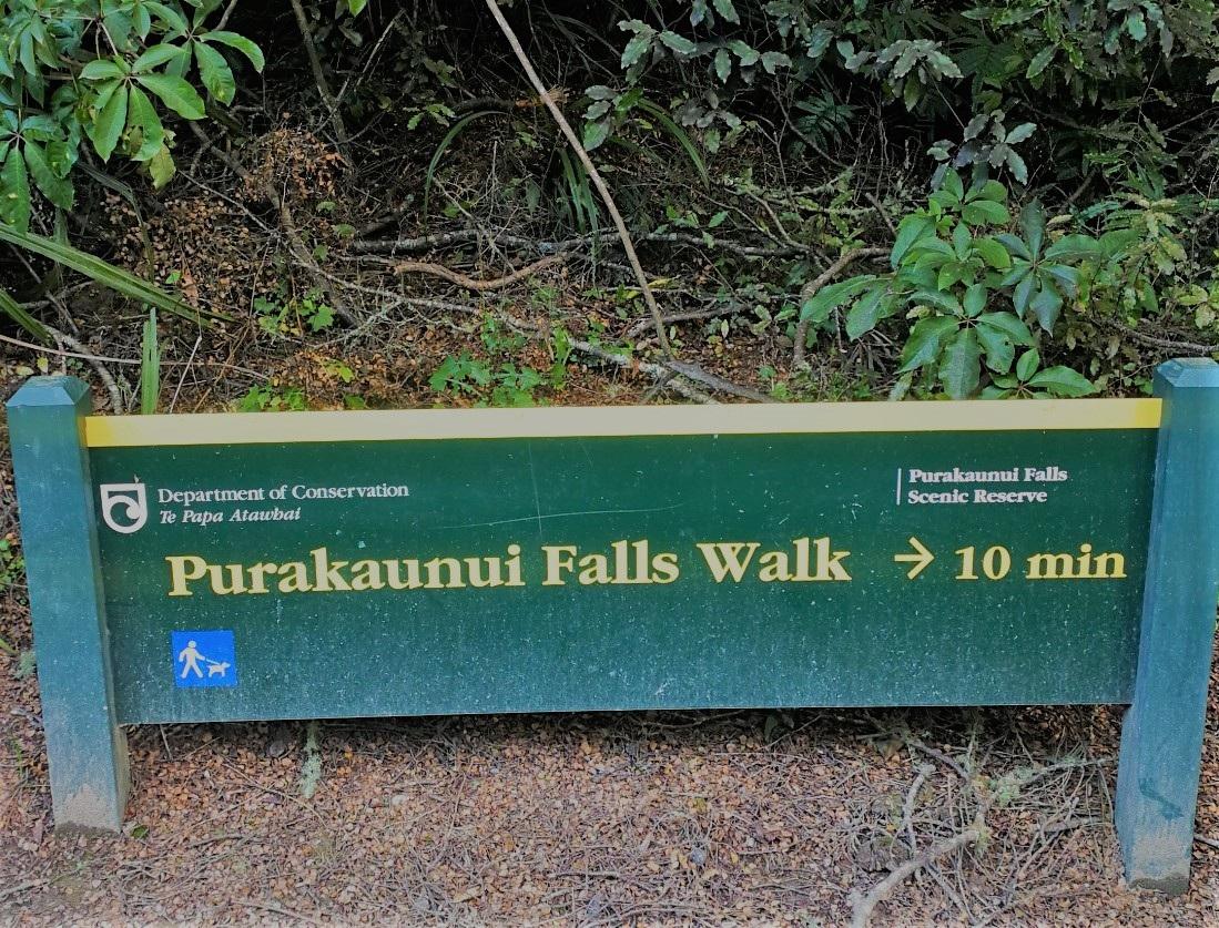 Purakanui-Falls-Walk