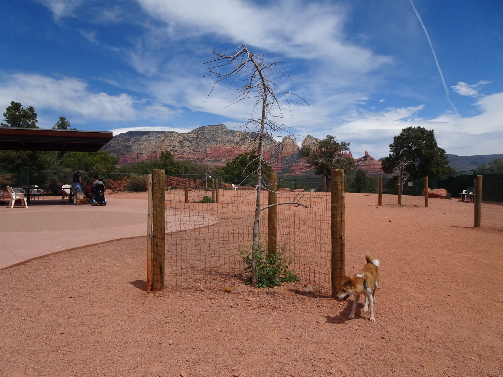 Sedona-Dog-Park-10