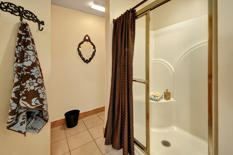 SMS-main-level-shower