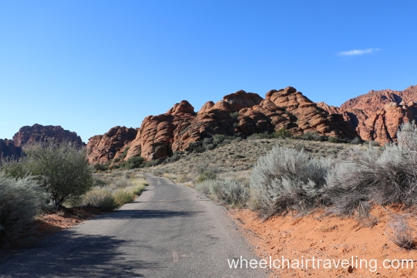 22_Whiptail Trail
