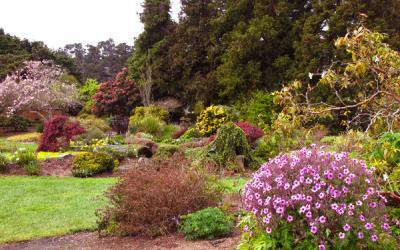 Mendocino Coast Botanical Gardens on the CA Coast