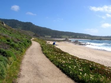 California Coast: Carmel River State Beach