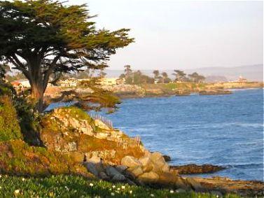 Santa Cruz, CA: Lighthouse Field State Beach
