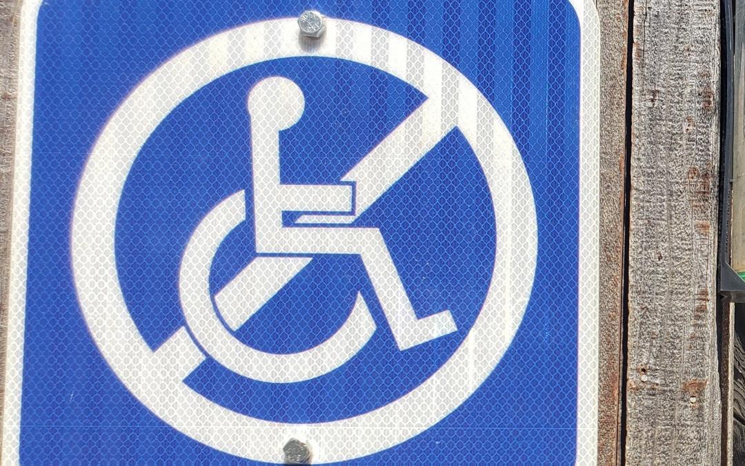The International Disability Treaty