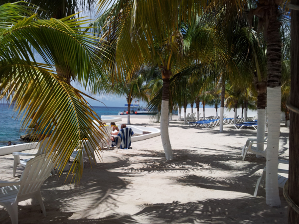 Exotic Trip to Cozumel, Mexico to Scuba Dive