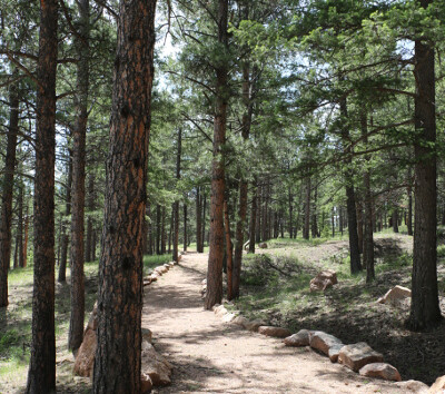 Colorado: Florissant Fossil Beds National Monument