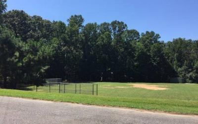 Cumming, Georgia: Ducktown Park