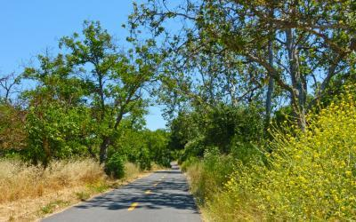 Coyote Creek Parkway: Santa Clara County, CA