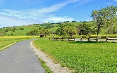 Martin Murphy Trail Access: Santa Clara County