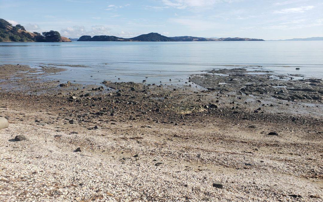 North Island: New Zealand Travel Tips