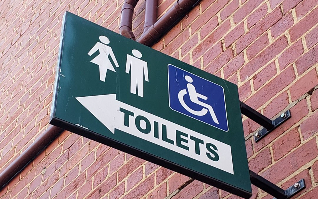 Europe Handicapped Toilets + Elevators